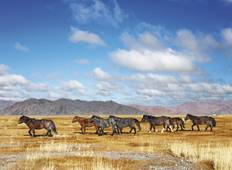 Jewels of the Trans Mongolian - To Beijing Tour