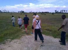 SPECTACULAR SAFARI IN NORTH WEST DISTRICT, BOTSWANA Tour