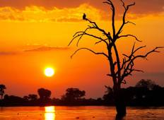 3 Days 2 Nights Selous Game Reserve Lodge Safari Tour