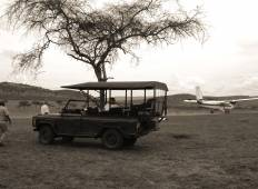 Legendary Classic Safari in Tarangire, Ngorongoro and Serengeti National Parks Tour