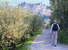 St Francis Way:  Assisi to Spoleto Tour
