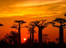 Madagascar Discovery And Splendor Tour