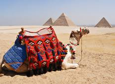 8-Day Around Egypt (5 stars & Domestic Flights) Tour