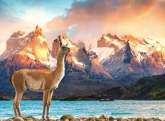 Wonders of South America: Brazil, Argentina, Chile and Peru in 21 days Tour