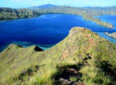 Komodo Dragon Adventure (from Kuta) Tour