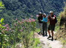 Lares Trek & Express Inca Trail 5D/4N Tour