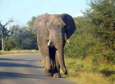 20 Days South Africa Explored Accommodated Adventure Tour