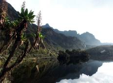 Hiking the Rwenzori  (4-Days) Tour