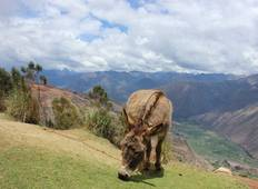 Choquequirao 5-Days Luxury Trek to the Lost City of the Incas Tour