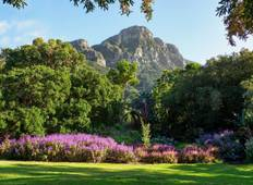 Art and Wine in Cape town Tour