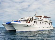 Galapagos cruise aboard the M/C Archipel I - 5 days Tour
