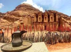 Splendours of Jordan - 8 Days Tour