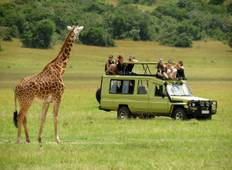 Wildlife and Safari Tour