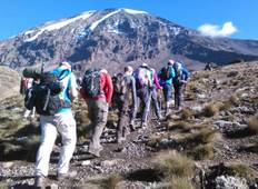 6 Days Kilimanjaro Trekking Machame Route + 2 Nights Hotel stay (8 Day Tour) Tour