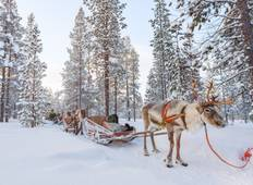The best of Lapland in 6 days Tour
