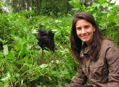 3 Days Gorillas & Golden Monkey Trekking Volcanoes National Park Tour