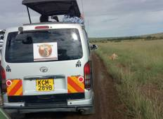 7 Days Magical of Kenya Safari Tour Tour