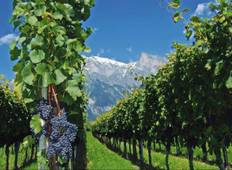 4-Day Mendoza Tour Tour