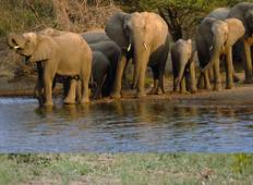 3 Day Kruger National Park tour Tour