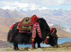 Tibet & Nepal: 13 Day Classic Overland Through the Himalaya, with Mt. Everest Base Camp (Fly In/Fly Out) Tour