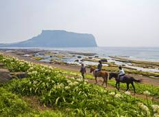 Discover Jeju Island - 3 Days (Airport Service Included) Tour