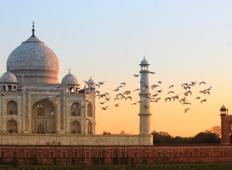 Unforgettable 8 Day Guided Golden Triangle Tour of India Tour
