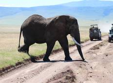 5-Days 4 Nights Safari Tarangire, Serengeti & Ngorongoro crater  Tour