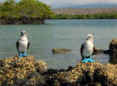 East Galapagos island Hopping Tour
