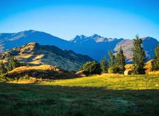 New Zealand Vista Tour