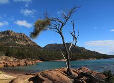 Tasmania\'s Footsteps and Trails Tour