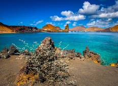 5 Day Galapagos Island Hopping Program Tour