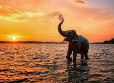 Discover Amazing Sri Lanka Tour Option 01  -  20 Days (North to South) Tour