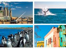 Buenos Aires & P. Madryn Tour