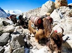 Everest Base Camp Trek- The most Loved trek trail  Tour
