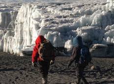 7 Day Kilimanjaro Trekking Tour Lemosho Route + 2 Nights hotel stay (9 Days Tour) Tour
