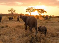 5 Days - Tanzania Camping Safari Tour