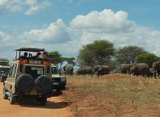 Guarantee Kenya and Tanzania Migration Watch – 8 Days/7 Nights Tour