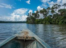 3 days - Tambopata Amazon Jungle Tour