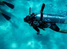 Discover Diving Tour in the Maldives Tour
