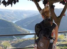 Walking Tour by the Douro wine country and historical villages Tour