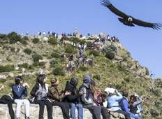 4 days - Arequipa & Colca Canyon Tour