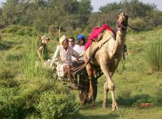 Best of Rajasthan Tour Tour