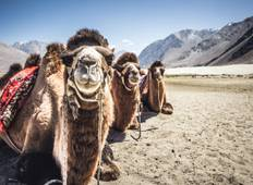 Journey to Ladakh with Unbelievable Memories Tour