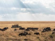 7 Day Grand Tanzania Safari Tour