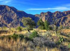 Big Bend National Park Hiking Tour