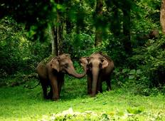 Classical South India - Tamilnadu And Kerala  Tour
