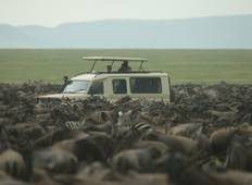 5 Days Serengeti Wildebeest Migration tour (6 destinations) Tour