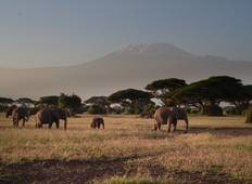 Explore Tanzania Big 5 - 10 Days Safari Tour