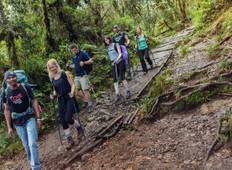 Kilimanjaro climb - Lemosho route 7 Days  Tour