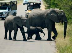 4 Days Kruger National Magical Safari with Panorama Tour